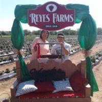 Reyes Farms.jpg